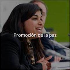 Rotary Club Logroño: Promoción de la paz